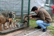 Öğrenciler hayvan dostlarıyla buluştu